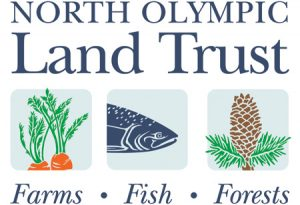 North Olympic Land Trust (NOLT) logo design by Laurel Black Design