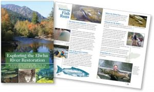 Elwha Restoration book by Laurel Black Design