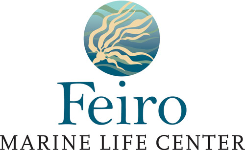 Feiro Marine Life Center award-winning logo by Laurel Black Design
